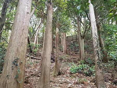 鎌倉明王院.jpg